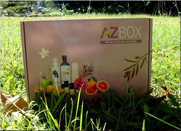 AZ Box Cheveux 1