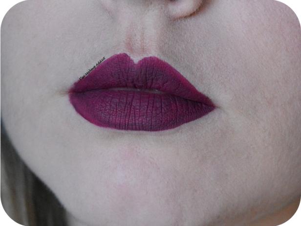 liquid-lipstick-pb-cosmetics-automne-fall-8